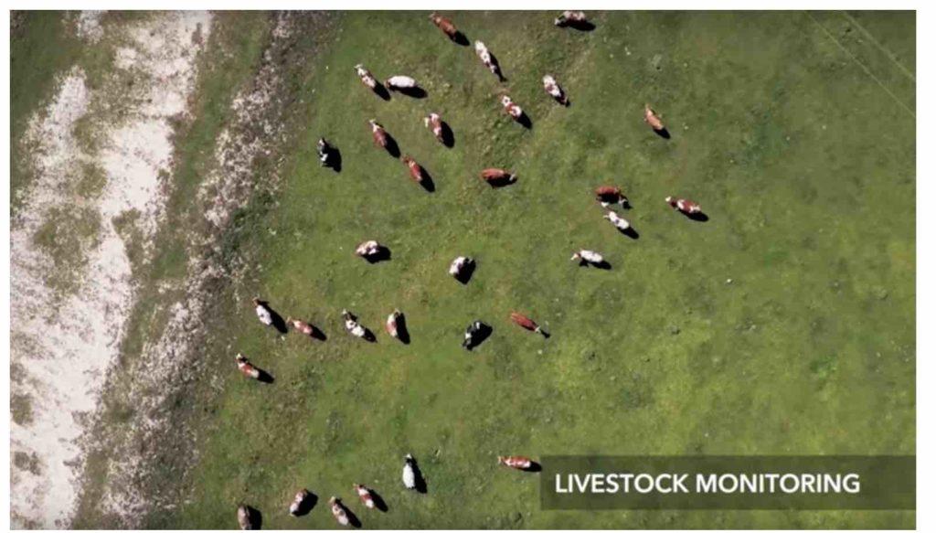 Agrar Drohne Österreich Alm
