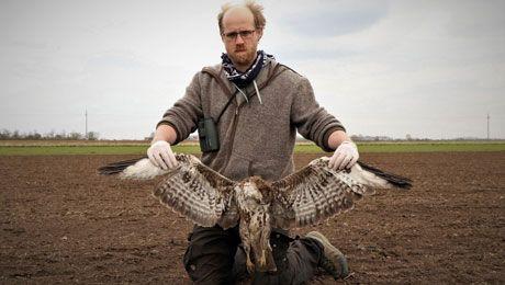 Birldife Austria Vogelschutz Drohnen