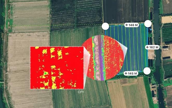 DJI Phantom P4 Multispectral Feld RGB
